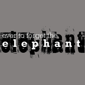 Ever to Forget the Elephant – Olivia Whyte
