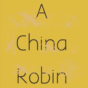 A China Robin – Philippa McMenamin
